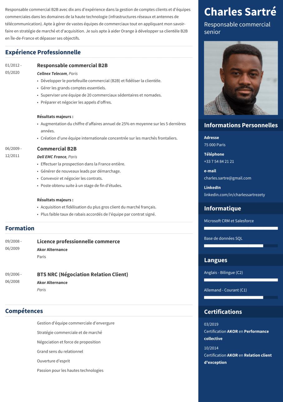 Exemple CV moderne