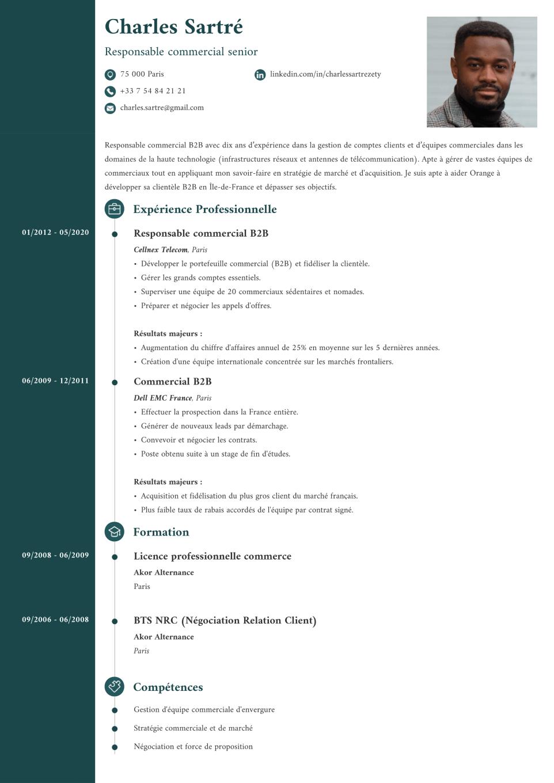 Modèle de CV original