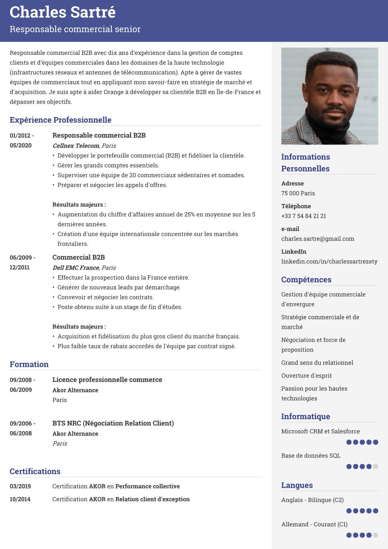 Modèle de CV parfait