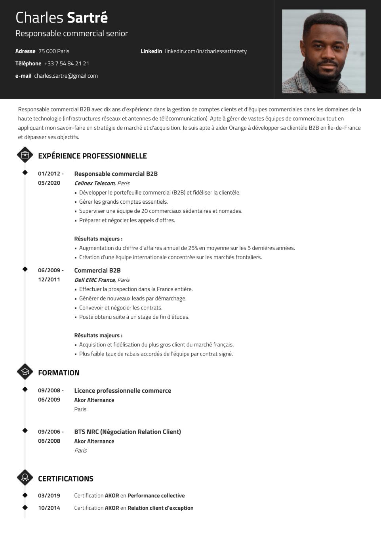 Modèle de CV design