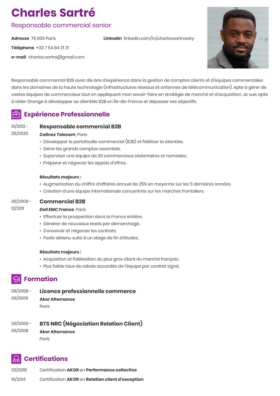 Modèle de CV beau