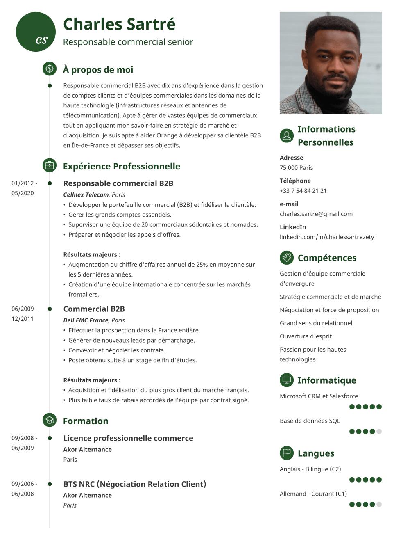Modèle de CV idéal