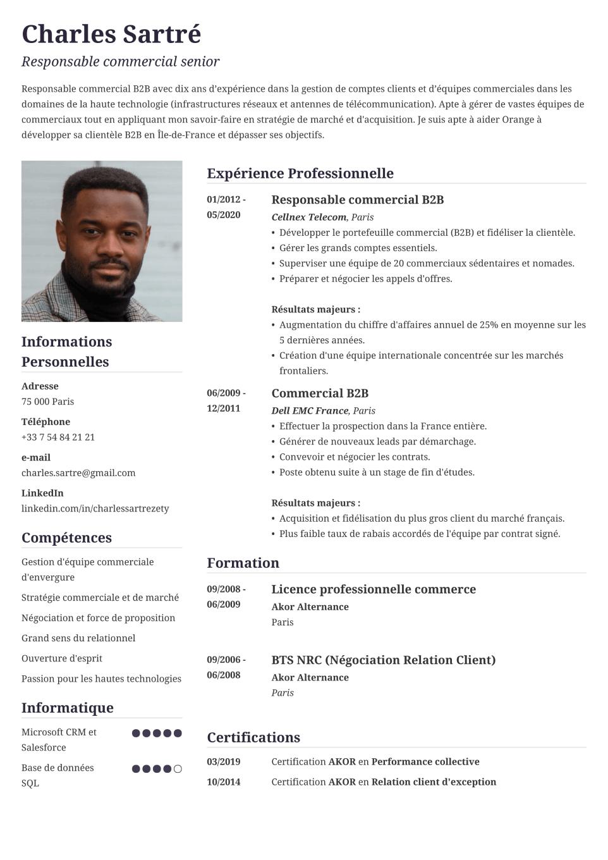 Modèle de CV type