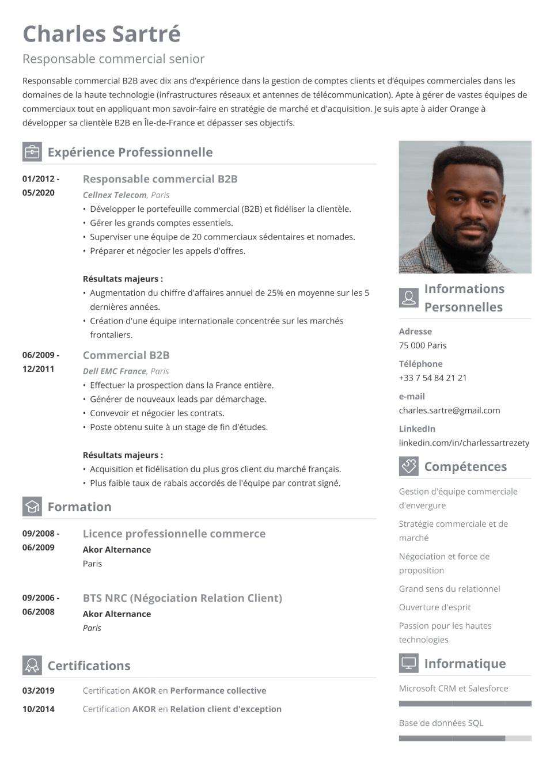 Modèle de CV artistique