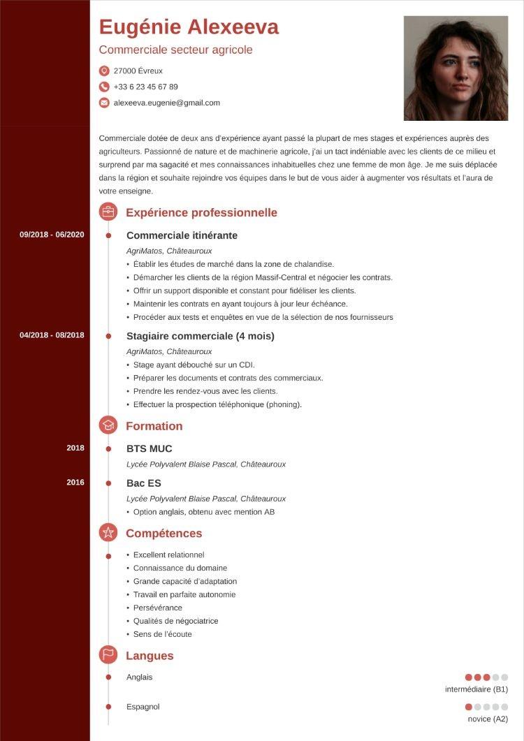 template cv concept