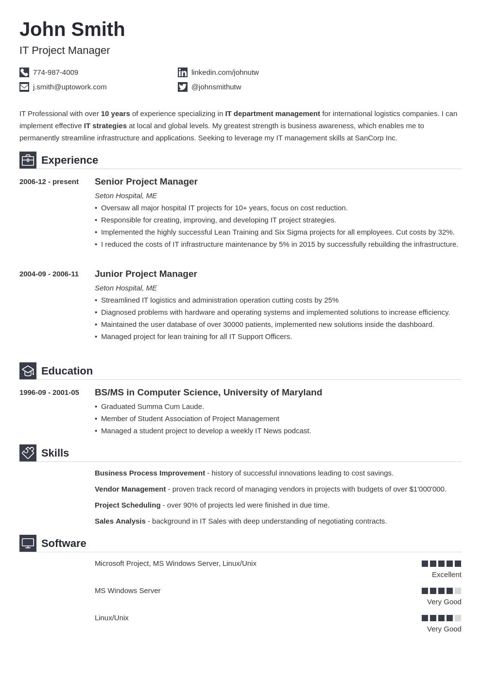 Modèle de CV professionnel Iconic